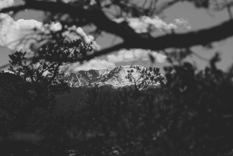 Ali Sardar: Mountain top seen through Colorado trees.
