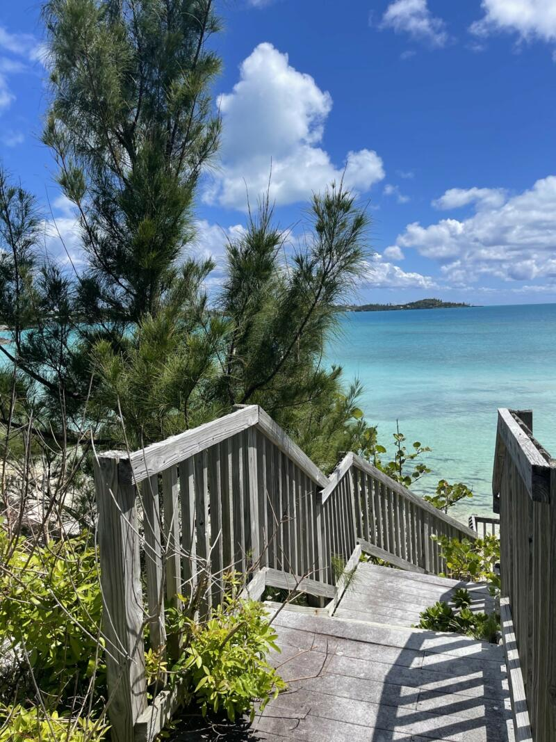 Amber Fields: wooden staircase leading down to a beach. Blue skies, clouds, and trees to the left of the stairs.