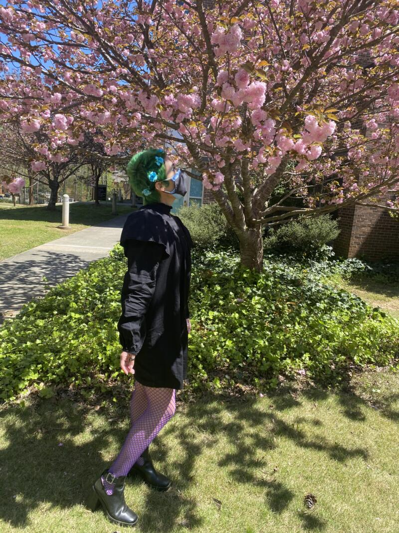 Avery Fields: young woman with with green hair, blue flower hair accessories. Wearing a black dress with purple fishnet leggings. Standing outside on grass next to a bush, and a tree with pink flowers.