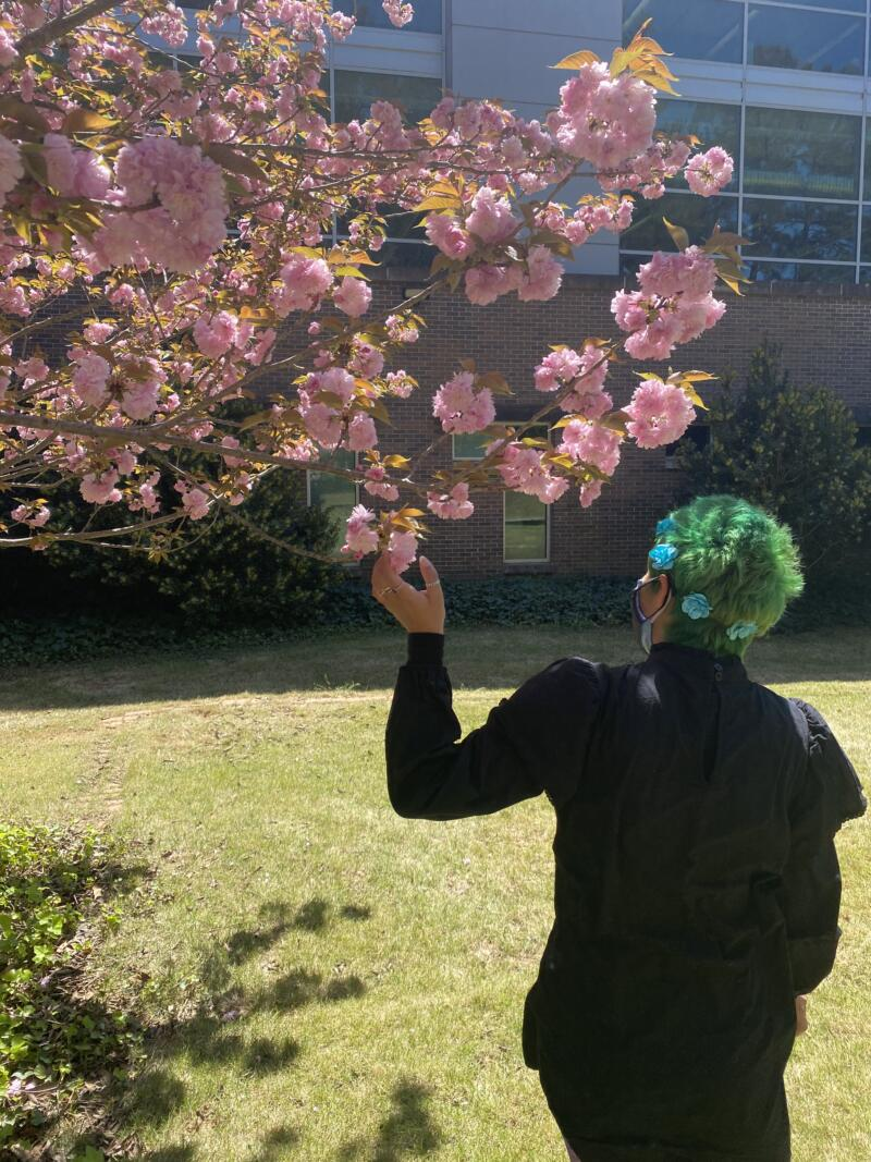 Avery Fields: young woman with with green hair, blue flower hair accessories. Wearing a black dress. Standing outside grass next to a bush, and a tree with pink flowers.